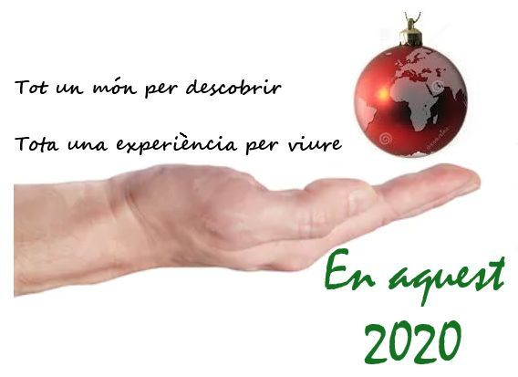 Molt bon 2020